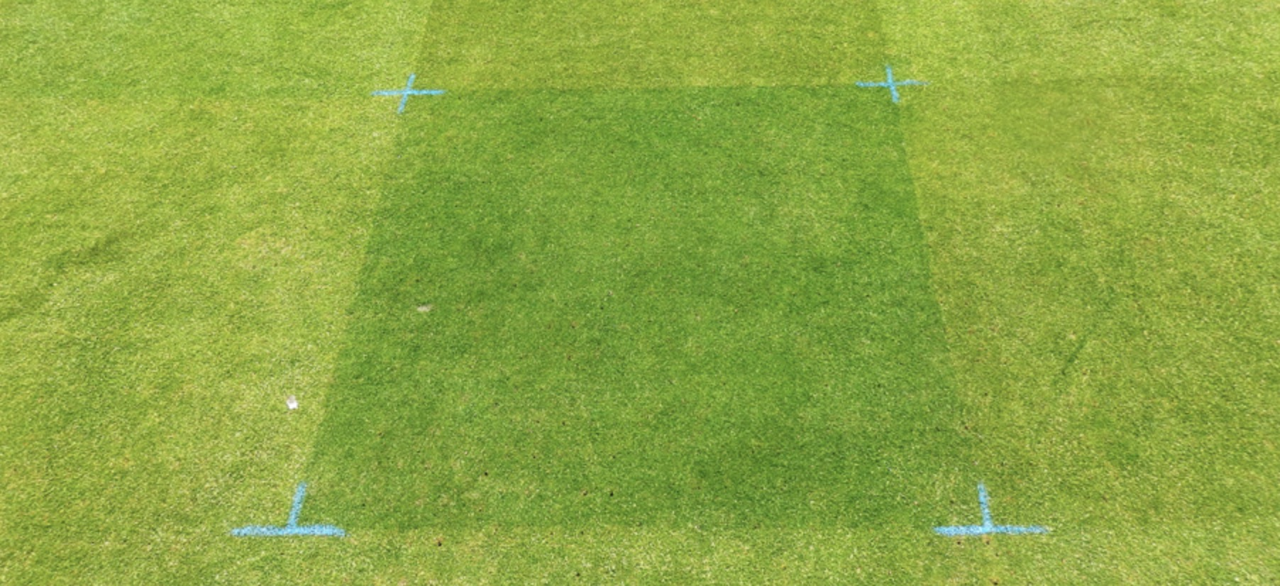 Ryder Turf Pigment for South African Golf Courses