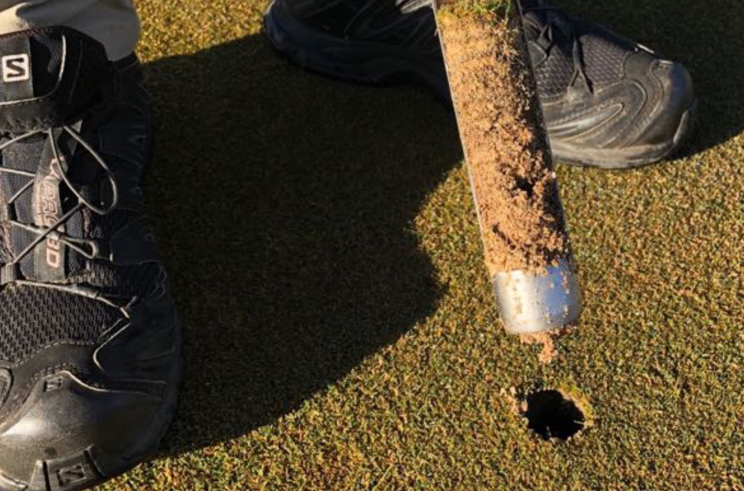 Turf Nutrition for South African Golf Courses