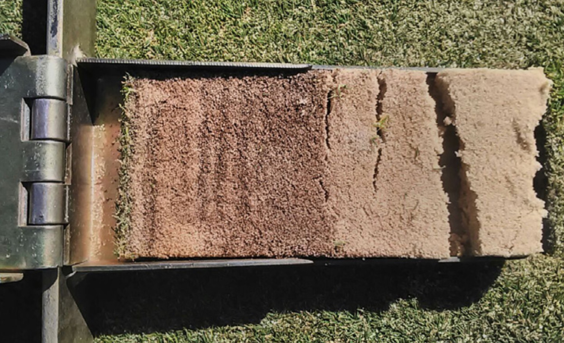 Turf Nutrition for Golf Courses