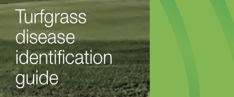 Turf Disease Indentification Guide for South Africa 2020